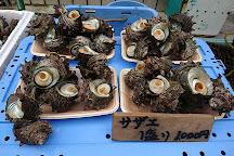 Yobuko Morning Market, Karatsu, Japan