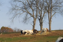 Triple M Ranch, Loudonville, United States