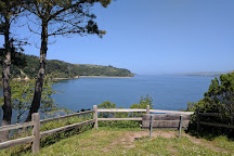 Tomales Bay State Park, Inverness, United States