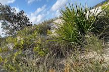 Collingwood Beach, Jervis Bay, Australia