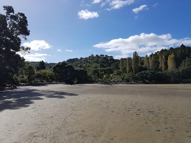 Whangateau Reserve
