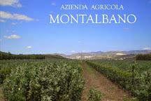 Azienda Agricola Montalbano, Menfi, Italy