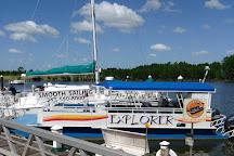 Cetacean Cruises, Orange Beach, United States