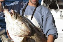 Top Catch Charters, Mooloolaba, Australia