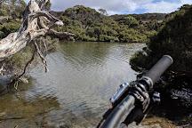 Lashmar Conservation Park, Penneshaw, Australia