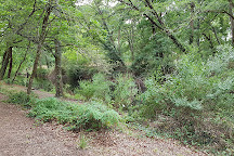 Parc de la Cheneraie, Gujan-Mestras, France