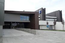 Ostravar Arena, Ostrava, Czech Republic