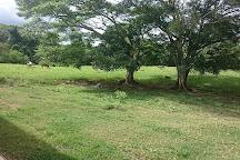 Fazenda Babilonia, Pirenopolis, Brazil