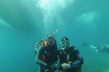Dolphin Diving Centre, Skiathos Town, Greece