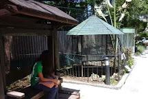 Rainforest Park Cebu, Cebu City, Philippines