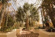 Adelaide Botanic Garden, Adelaide, Australia