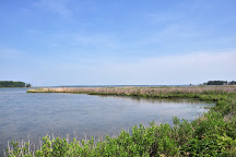 Eastern Neck National Wildlife Refuge, Maryland, United States