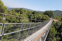 Uri's Trail ,Nesher Park Bridge, Haifa, Israel