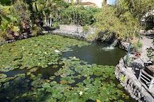 Jardin de Orquideas de Sitio Litre, Puerto de la Cruz, Spain