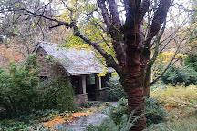 RHS Garden Rosemoor, Great Torrington, United Kingdom