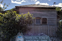 Primeval Forest National Park, Nassau, Bahamas