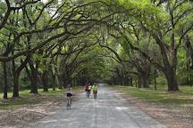 Charleston Bicycle Tours, Charleston, United States