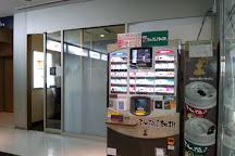 NS Bulding, Nishishinjuku, Japan