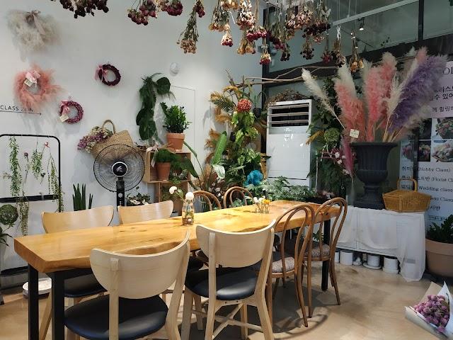 The Piola Cafe
