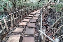 Dr. Salim Ali Bird Sanctuary, Panjim, India