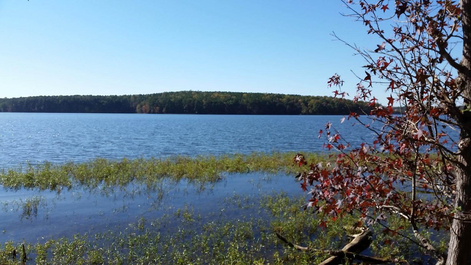 Badin lake campground recgovnpsdata around guides for Badin lake fishing