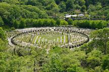 Hana Festa Memorial Park, Kani, Japan