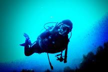 Deep Turtle Plongee, Les Anses d'Arlet, Martinique