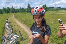 Algonquin Park Adventure Tours, Algonquin Provincial Park, Canada