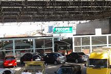 Padre Eustaquio Covered Market, Belo Horizonte, Brazil