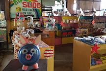 Zoocobia Fun Zoo, Angeles City, Philippines