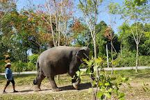 Green Elephant Sanctuary Park, Choeng Thale, Thailand
