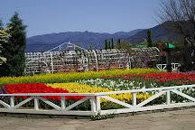 Herb Garden Tabinikki, Koshu, Japan