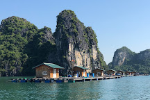 Bai Tu Long Bay Tours - Private Day Tours, Halong Bay, Vietnam