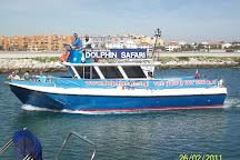 Dolphin Safari, Gibraltar