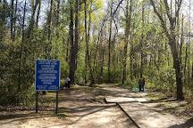God's Acre Healing Springs, Blackville, United States