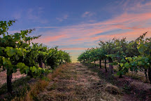 Taltarni Vineyards, Moonambel, Australia