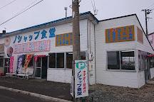 Wakkanai City Noshappu Aquarium, Wakkanai, Japan
