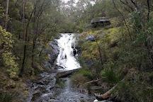 Beedelup National Park, Pemberton, Australia