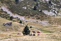 Parc Natural de la Vall de Sorteny, La Pobla de Massaluca, Spain