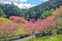 Katsuragisanroku Park, Katsuragi, Japan