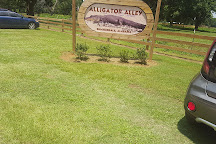 Alligator Alley, Summerdale, United States