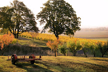 Yamhill Valley Vineyards, McMinnville, United States