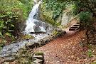 Wilton Lodge Park