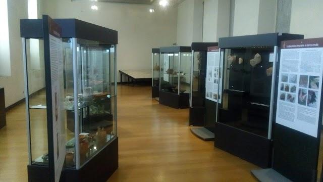 Antiquarium Alda Levi