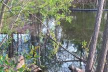 Walker's Pond, Warner Robins, United States