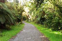 Tatare Tunnels Walk, Franz Josef, New Zealand