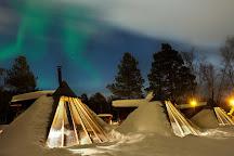 Holmen Husky - Dog Sledding Tours, Alta, Norway