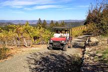 Savor Napa Valley Wine Tours, Napa, United States