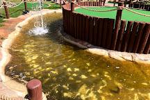 Fun City, Estes Park, United States