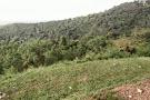 Hatyai Municipality Park